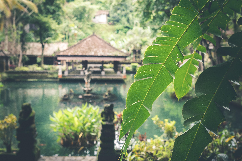es seguro viajar Indonesia